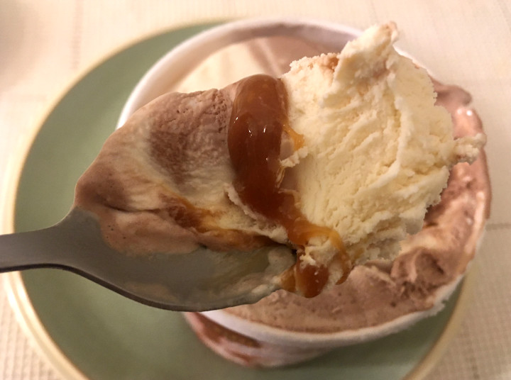 Trader Joe's Golden Caramel Swirl in French Vanilla & Chocolate Ice Cream